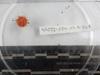 http://mczbase.mcz.harvard.edu/specimen_images/invertebrates/large/139226_Echinoidea_1.jpg