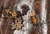http://mczbase.mcz.harvard.edu/specimen_images/invertebrates/large/144145_Rhopalocranaus_albilineatus_4.jpg