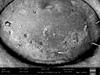 http://mczbase.mcz.harvard.edu/specimen_images/invertebrates/large/147382_Neogovea_branstetteri_9.jpg
