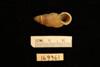 http://mczbase.mcz.harvard.edu/specimen_images/malacology/large/169361_Cyclostoma_sectilabrum_2.jpg