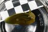 http://mczbase.mcz.harvard.edu/specimen_images/malacology/large/389077_Phyllaplysia_taylori_2.jpg