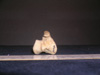 http://mczbase.mcz.harvard.edu/specimen_images/mammalogy/large/10733_Gazella_dorcas_tibia_3.jpg