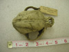 http://mczbase.mcz.harvard.edu/specimen_images/mammalogy/large/11212_Canis_familiaris_hd.jpg