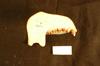 http://mczbase.mcz.harvard.edu/specimen_images/mammalogy/large/12753_Presbytis_cristata_sondaica_ml.jpg