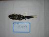 http://mczbase.mcz.harvard.edu/specimen_images/mammalogy/large/15479_Spilogale_putoris_leucoparia_d.jpg