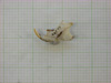 http://mczbase.mcz.harvard.edu/specimen_images/mammalogy/large/22539_Otomys_kempi_hl2.jpg