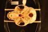 http://mczbase.mcz.harvard.edu/specimen_images/mammalogy/large/25810_Colobus_badius_badius_hv.jpg