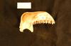 http://mczbase.mcz.harvard.edu/specimen_images/mammalogy/large/25810_Colobus_badius_badius_ml.jpg