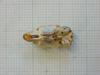 http://mczbase.mcz.harvard.edu/specimen_images/mammalogy/large/26652_Otomys_typus_uzungwensis_hv.jpg