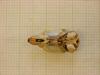 http://mczbase.mcz.harvard.edu/specimen_images/mammalogy/large/26653_Otomys_typus_uzungwensis_hv.jpg