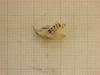 http://mczbase.mcz.harvard.edu/specimen_images/mammalogy/large/26654_Otomys_lacustris_hl2.jpg