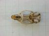 http://mczbase.mcz.harvard.edu/specimen_images/mammalogy/large/31271_Otomys_tropicalis_elgonis_hv.jpg