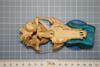 http://mczbase.mcz.harvard.edu/specimen_images/mammalogy/large/37021_vulpes_chama_hv.jpg