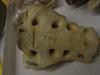 http://mczbase.mcz.harvard.edu/specimen_images/mammalogy/large/37363_Pongo_pygmaeus_sacrum3.jpg