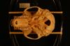 http://mczbase.mcz.harvard.edu/specimen_images/mammalogy/large/37716_Presbytis_phayrei_crepuscula_hv.jpg