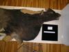 http://mczbase.mcz.harvard.edu/specimen_images/mammalogy/large/38108_Novibos_sauveli_l.jpg