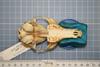 http://mczbase.mcz.harvard.edu/specimen_images/mammalogy/large/38620_vulpes_macrotis_nevadensis_hv.jpg