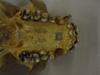 http://mczbase.mcz.harvard.edu/specimen_images/mammalogy/large/41432_hylobates_lar_lar_hv.jpg