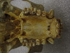 http://mczbase.mcz.harvard.edu/specimen_images/mammalogy/large/41435_hylobates_lar_lar_hv.jpg