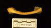 http://mczbase.mcz.harvard.edu/specimen_images/mammalogy/large/41565_Hylobates_lar_vestitus_clav-inf.jpg