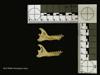 http://mczbase.mcz.harvard.edu/specimen_images/mammalogy/large/44946_Cheirogaleus_major_ml.jpg