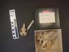 http://mczbase.mcz.harvard.edu/specimen_images/mammalogy/large/5042_Cabassous_tatouay_hv.jpg