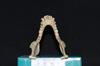http://mczbase.mcz.harvard.edu/specimen_images/mammalogy/large/5346_Ateles_geoffroyi_geoffroyi_jd.jpg