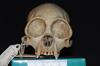 http://mczbase.mcz.harvard.edu/specimen_images/mammalogy/large/5350_Ateles_geoffroyi_geoffroyi_hf.jpg