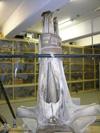http://mczbase.mcz.harvard.edu/specimen_images/mammalogy/large/62052_Eubalaena_glacialis_hd2.jpg