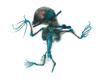 http://mczbase.mcz.harvard.edu/specimen_images/mammalogy/large/62236_Leptonycteris_nivalis_v.jpg