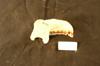 http://mczbase.mcz.harvard.edu/specimen_images/mammalogy/large/7303_Presbytis_chrysomelas_ml.jpg