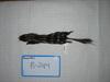 http://mczbase.mcz.harvard.edu/specimen_images/mammalogy/large/BANGS-244_Spilogale_putorius_putorius_d.jpg
