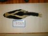 http://mczbase.mcz.harvard.edu/specimen_images/mammalogy/large/BANGS-7269_Mephitis_mephitis_nigra_d.jpg
