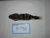 http://mczbase.mcz.harvard.edu/specimen_images/mammalogy/large/BANGS-7916_Spilogale_putoris_phenax_d.jpg
